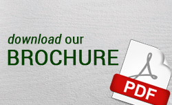 Download our brochure